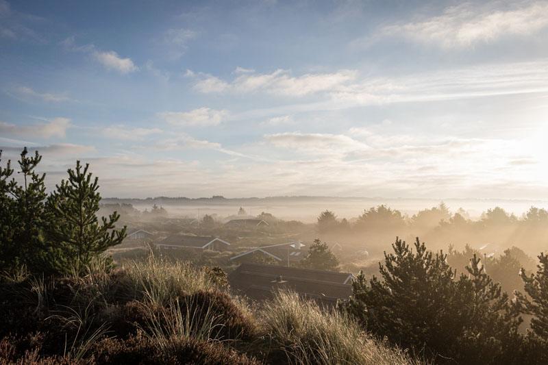 Morgennebel im Herbst liegt über der Dänischen Heide