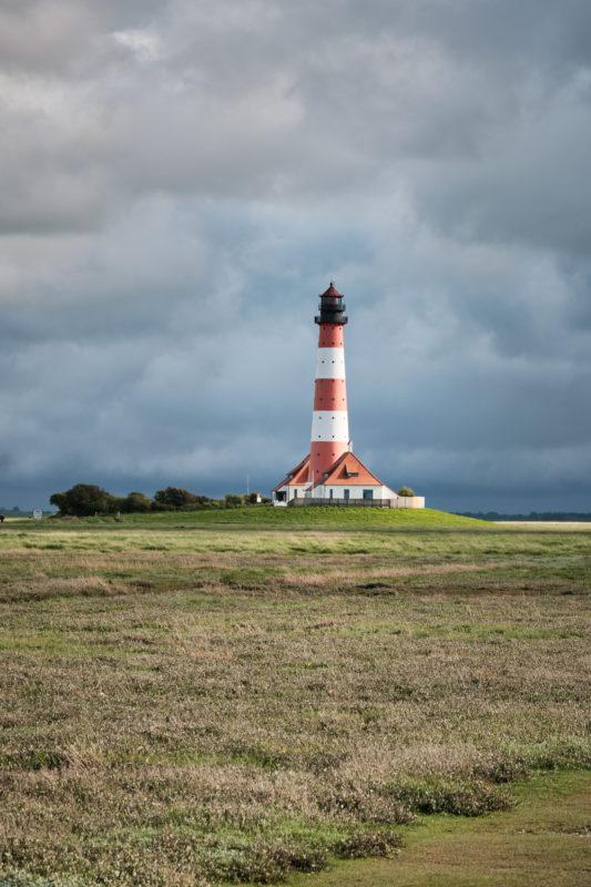 Rund um den Leuchtturm Westerheversand befinden sich die Salzwiesen